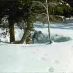 19820320a